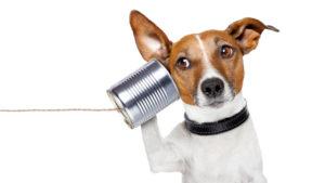150316better-listener-thumb-640x360-85325