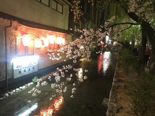 京都市の出会いの場③20代社会人の画像