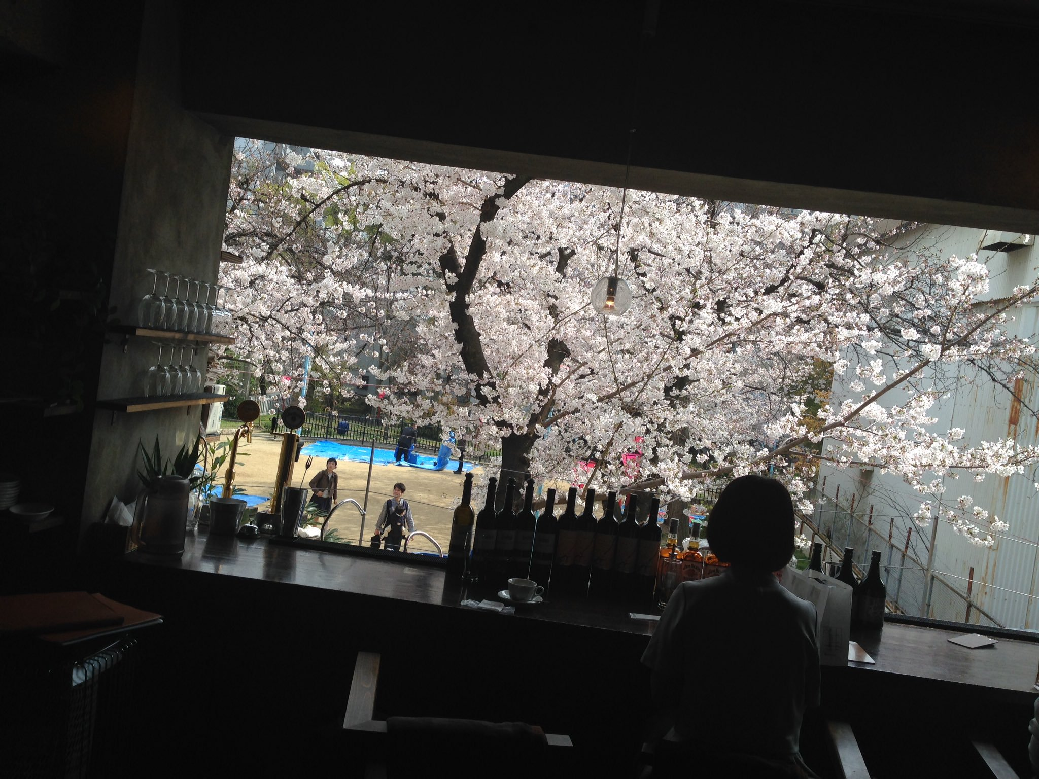 グローブカフェ桜40