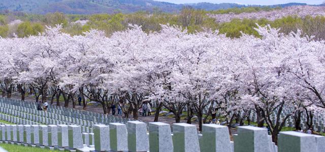 戸田記念墓地