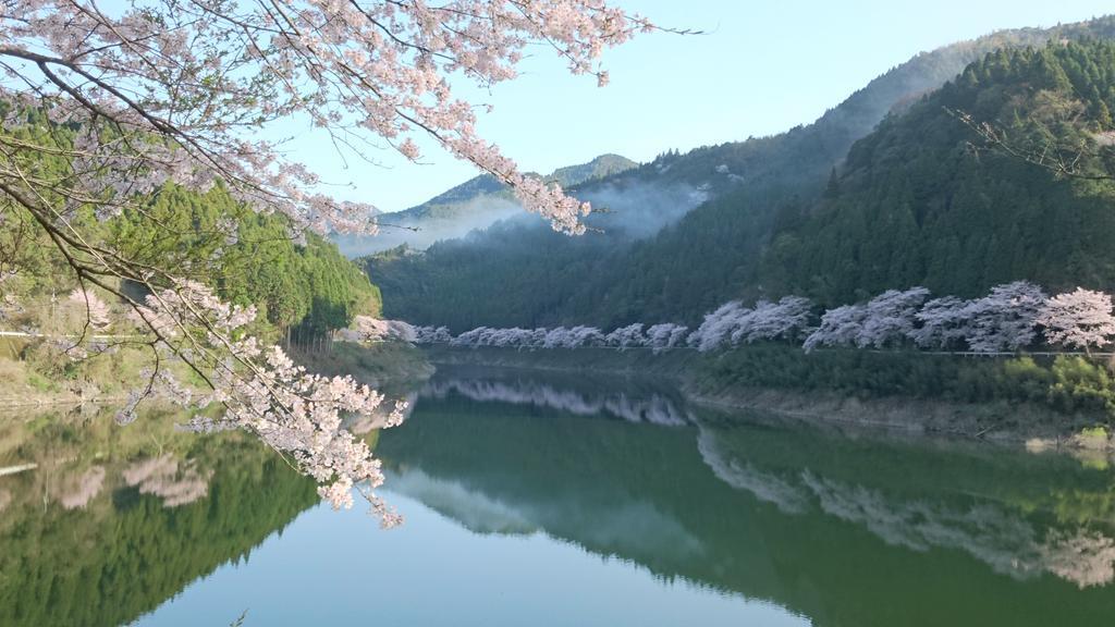 日向神湖さくら10
